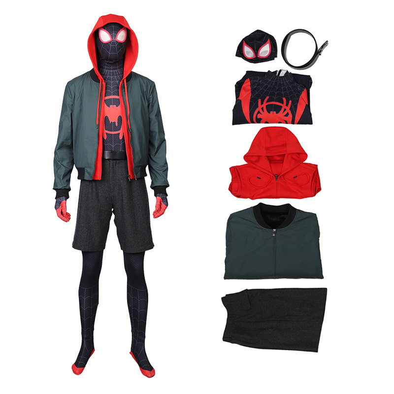 Spider Man Into The Spider-Verse Aaron Davis Cosplay Costume