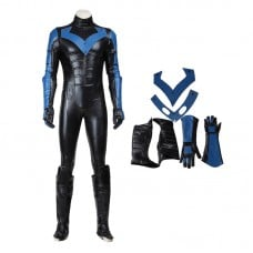 DC Comics Superhero Night Wing Cosplay Costume