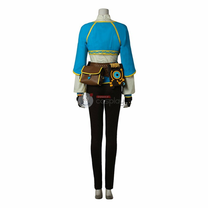 The Legend Of Zelda Breath Of The Wild Princess Zelda Cosplay Costume